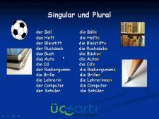 Almanca Çoğul Cümleler Video Ders Anlatımı