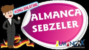 Almanca Sebzeler (Resimli)